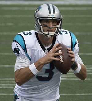 Derek Anderson (American football) - Anderson with the Panthers in 2014