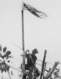 A soldier in a slouch hat raises a flag on a makeshift flag pole