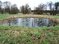 Dew pond in the Nature Reserve - geograph.org.uk - 309865.jpg