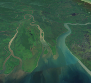 Digul - NASA Landsat image (enhanced) of the Digul Estuary, looking roughly east. Dolak can be seen towards the south.