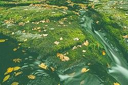 Dingmans Creek, Delaware Water Gap NRA (30502404225).jpg