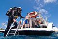 Dive BVI, Scrub Island Resort, Spa & Marina.jpg