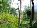 Dmitrovsky District, Moscow Oblast, Russia - panoramio (35).jpg