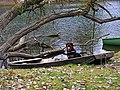 Dog Boat - panoramio.jpg
