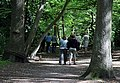 Dog Walking Party in Highgate Wood - geograph.org.uk - 1317936.jpg