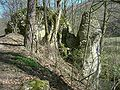 Dolina Będkowska a1.jpg