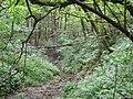 Dolina Bolechowicka 2.jpg