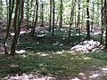 Dolina grobova 2.JPG