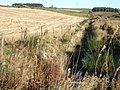 Drainage ditch upstream of Finnercy road in Autumn - geograph.org.uk - 613878.jpg