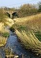 Dreel viaduct - geograph.org.uk - 400616.jpg