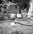 Drvú (plug)- novejši, z značilnim zakrivljenim gredljem, Brezovica 1955.jpg