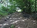 Dry Stone Wall in the process of being repaired - geograph.org.uk - 543774.jpg