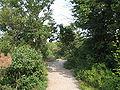 Duino-Aurisina-IMG 2914.JPG