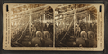 Dyehouse, White Oak Cotton Mills. Greensboro, N.C, by H.C. White Co..png
