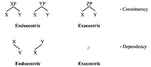 Endocentric and exocentric - Endocentric and exocentric structures