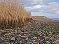 East Clough foreshore - geograph.org.uk - 710294.jpg