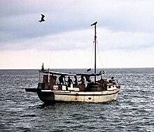 Foto de unumasta boato sur maro