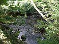 Edinburgh - Water of Leith - Waterflow (2961544093).jpg