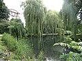 Eimsbütteler Park Am Weiher Bäume (2).jpg