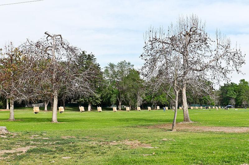 File:El Dorado Regional Pk Archery Range.jpg