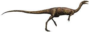 Ceratosauria - 80 px