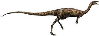 Abelisauridae - Image: Elaphrosaurus (flipped)