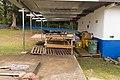 Elementary School in Boquete Panama 13.jpg