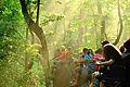 Elephant Safari at Jaldapara 1.jpg