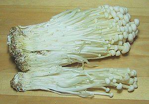 Enokitake - Cultivated Flammulina velutipes