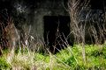 Enrance To WW2 Anti-Aircraft Bunker Old Woking Surrey UK.jpg