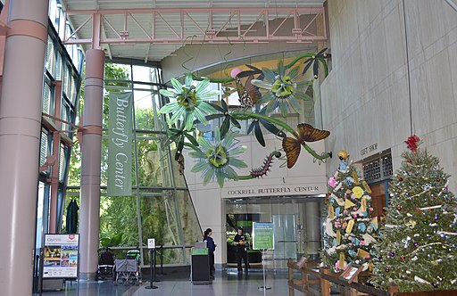 Houston Museum of Natural Science - Virtual Tour