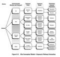 Environmental risk conceptual model.png