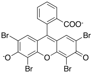 Eosin groups of chemical compound used as dyes