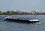 Eternity (ship, 2010) 003.jpg