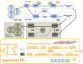 Evolucion 2G-3G-4G-5G.png