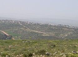 Faqqua 2006.jpg