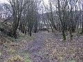 Farm Track, Townsendfold - geograph.org.uk - 1080013.jpg