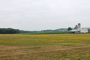 Derry Township, Montour County, Pennsylvania - Field in Derry Township