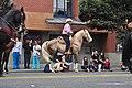 Fiestas Patrias Parade, South Park, Seattle, 2017 - 277 - horses.jpg