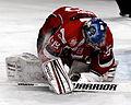 Finale de la coupe de France de Hockey sur glace 2013 - 032ter.jpg
