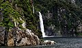 Fiordland National Park. NZ. (8111885184).jpg