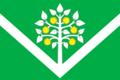 Flag of Belokhutorskoe (Krasnodar krai).png