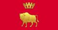 Flag of Grodno region.png