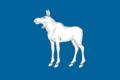 Flag of Yoshkar-Ola (Mariy-El) (2006-2011).png