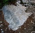 Flickr - brewbooks - Interesting rock at Snow Lake.jpg