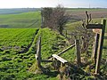 Flixton Wold - geograph.org.uk - 325275.jpg
