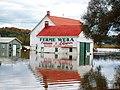 Flood - panoramio (5).jpg