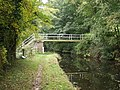 Footbridge over The Montgomery Canal - geograph.org.uk - 581992.jpg
