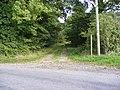 Footpath by the side of Coe Wood - geograph.org.uk - 979782.jpg