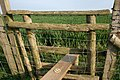 Footpath stile between Stone Cliff and Fairfield - geograph.org.uk - 413703.jpg